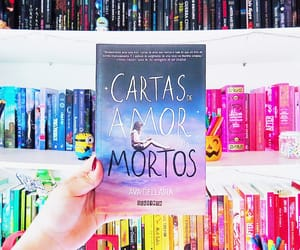 book, letters, and cartas de amor aos mortos image