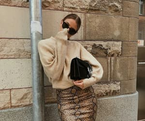 animal print, fashion, and knitwear image