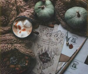 autumn, pumpkin, and coffe image