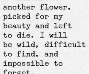 quotes, flowers, and wild image
