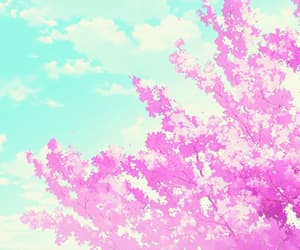 aesthetic, cherry blossom, and light image