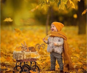 adorable, autumn colors, and bunnies image
