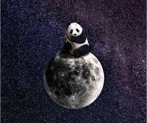 imagination, tumblr, and moon image
