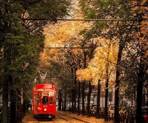 autumn and travel image
