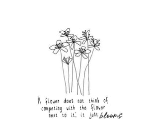bloom and quote image