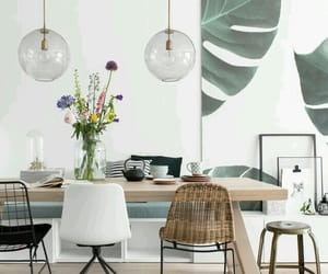 decor, feed, and home image