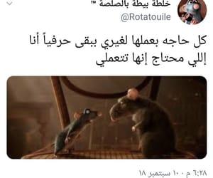 arab, arabic, and معلومات image