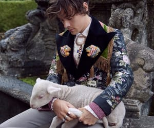 gucci, Harry Styles, and one direction image