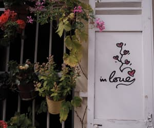 flowers, paris, and street art image