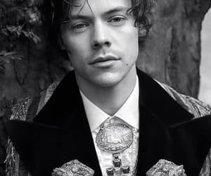 Harry Styles for Gucci's Cruise 2019 Tailoring Campaign👑  Photographed by Glen Luchford✨