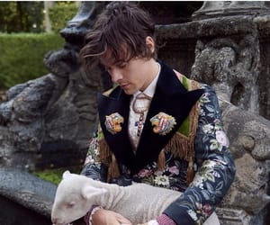 fashion, Harry Styles, and gucci image