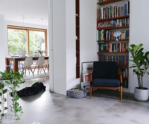 book shelf, living room, and plants image