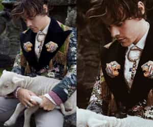 adorable, harold, and one direction image