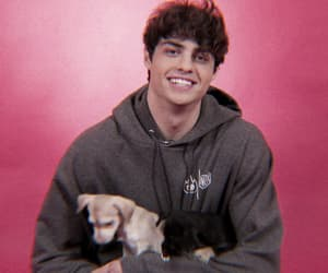 cutie, hotty, and noah centineo image