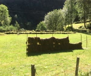 green, hay, and mountain image