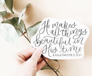 beauty, inspiration, and scripture image