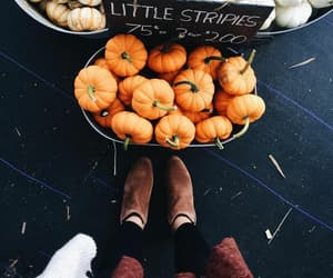 autumn, girly, and shoes image