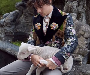 animals, one direction, and gucci image
