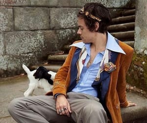 gucci, Harry Styles, and harry styles gucci image
