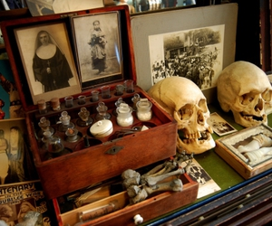 skull and antiques image