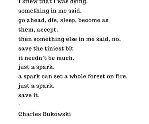 charles bukowski, literature, and dying image