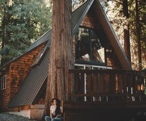 aesthetic, brown, and cabin image