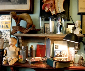 anatomical, antiques, and medical image