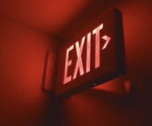 exit, neon, and aesthetic image