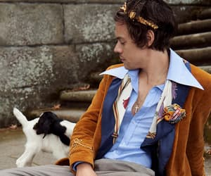 model, Harry Styles, and gucci campaign image