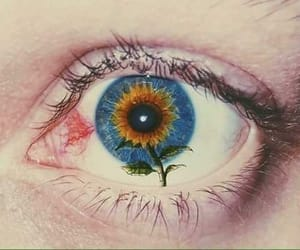 aesthetic, eye, and flower image