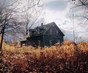 abandoned, fall, and haunted image
