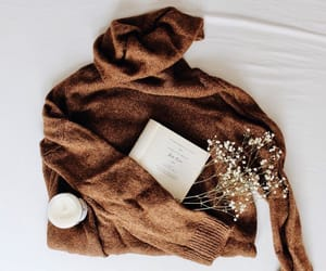 autumn, book, and flowers image