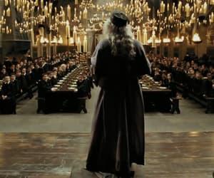 albus dumbledore, hall, and film image