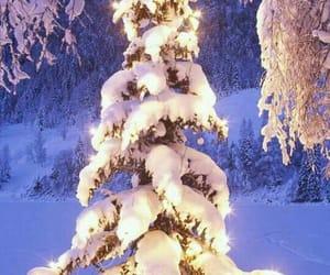 christmas, santa claus, and pinheiro image