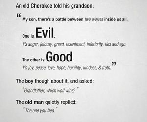 evil, feed, and quote image