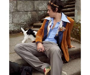 goats, Harry Styles, and gucci image