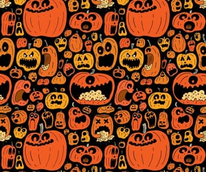 adorable, orange, and pumpkins image