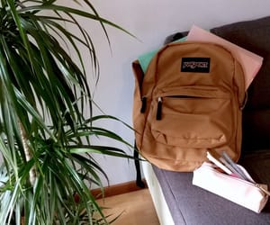 backpack, school, and jansport image