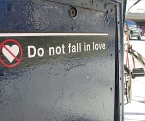 dangerous, fall in love, and do not image