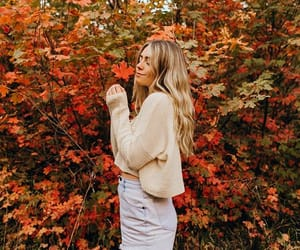 autumn, colors, and cozy image