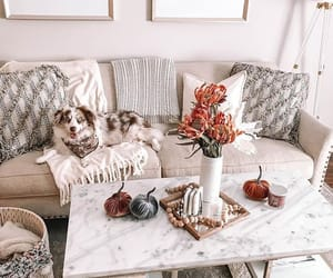 cozy, decor, and decorations image