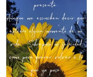 flores, frases, and photo image