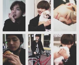 Image by queen