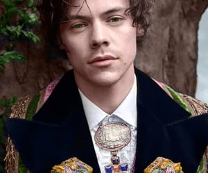 Harry Styles / Gucci.