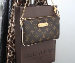 bags, fashion, and louis vutton image