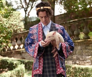 gucci, fashion, and Harry Styles image