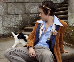 fashion, gucci, and harrystyles image