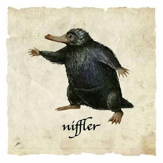 niffler, fantastic beasts, and newt scamander image