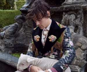 Harry Styles 2018 gucci campaing