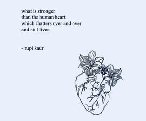 quotes, inspirational quotes, and rapi kaur image
